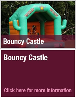 Wild West Bouncy Castle